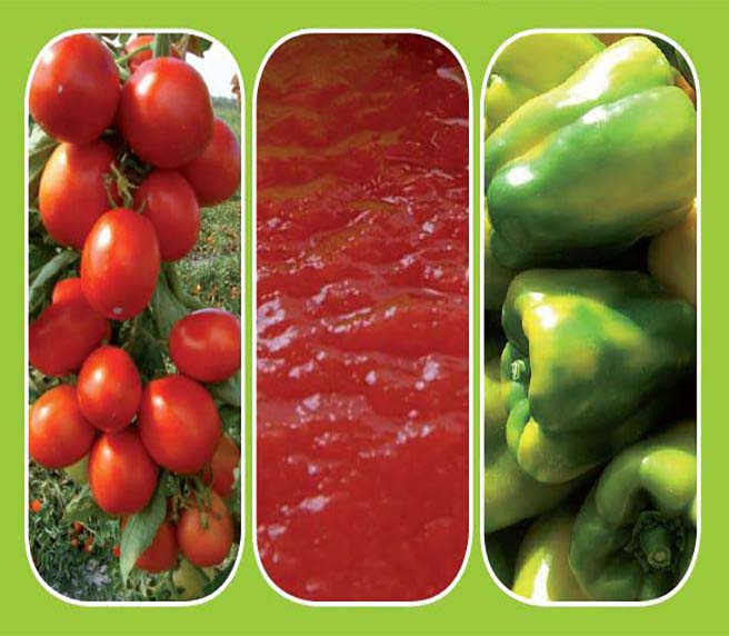fertilizzanti-organici-pomdoro-peperone-1
